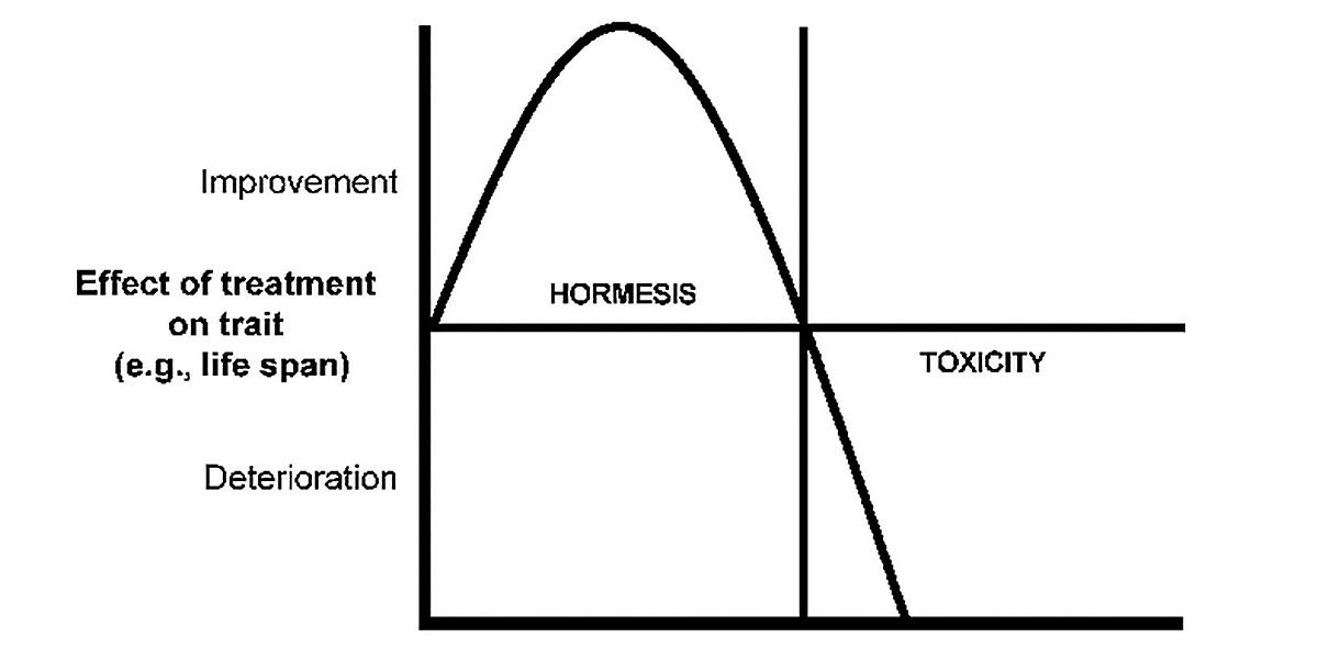 Hormèse