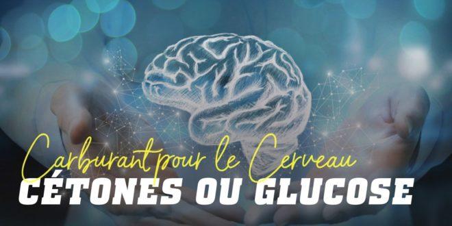 Quel est le meilleur carburant pour le cerveau, les cétones ou le glucose?