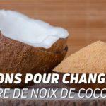 4 raisons pour changer au sucre de noix de coco