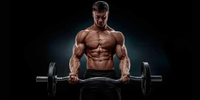 Comment gagner de la masse musculaire