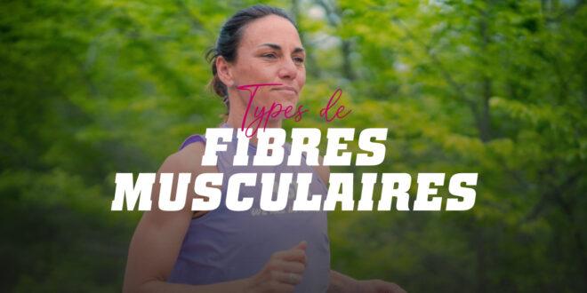 Les types de fibres musculaires et leur relation avec le sport