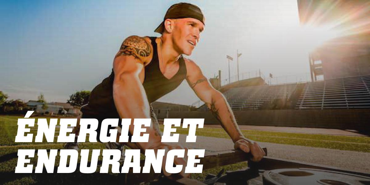 Énergie endurance