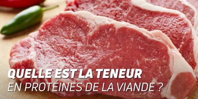 Quelle Quantité de Protéines contient la Viande de Bœuf ?