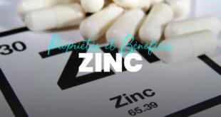 Propriétés et avantages du zinc