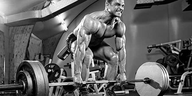 Clés pour gagner de la masse musculaire