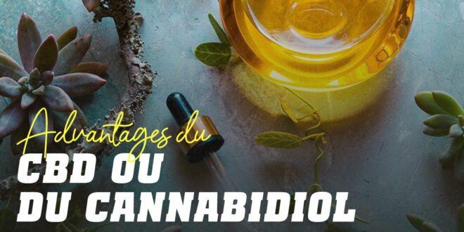 Avantages du CBD ou du Cannabidiol