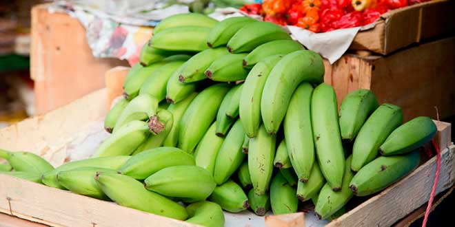 Banane et amidon résistant