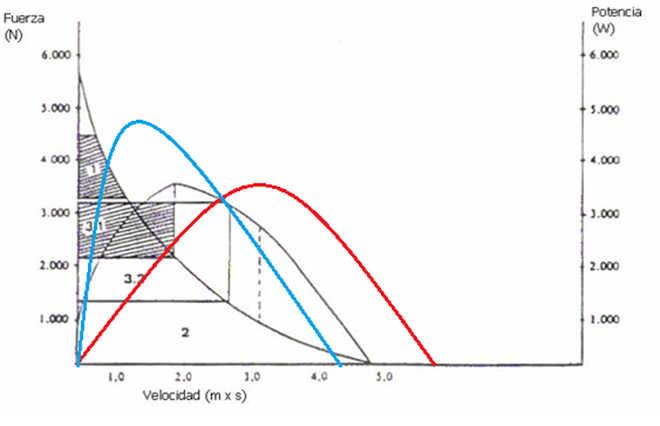 Curve de force basketball