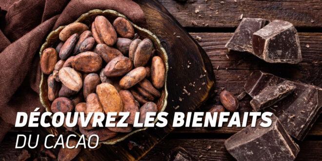 Découvrez les Bienfaits du Cacao !