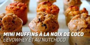 Mini Muffins à la noix de coco l'évowhey et au nutchoco