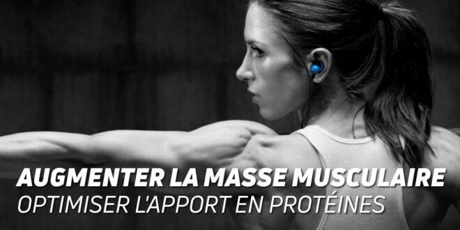 Stratégies pour Augmenter la Masse Musculaire : Optimiser l'Apport en Protéines