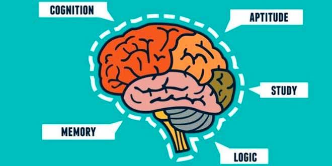 Capacités Cognitive
