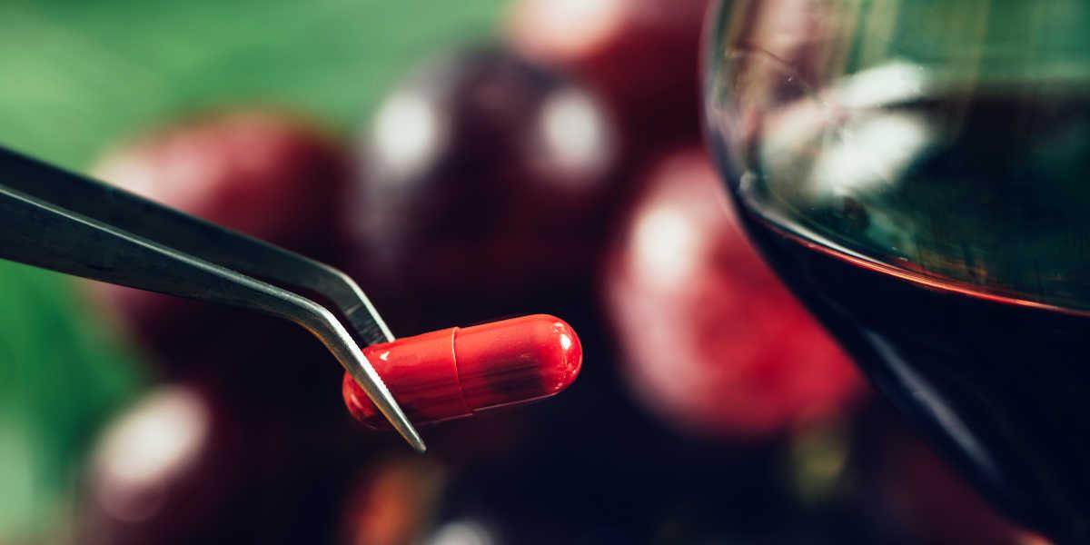 Quelle est la principale source naturelle de resvératrol ?