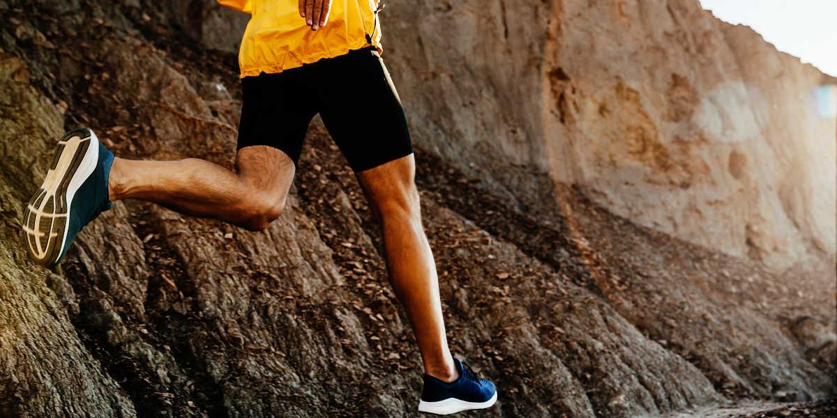Comment le resvératrol aide-t-il à perdre du poids ?