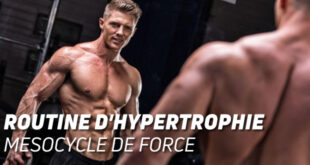 Routine d'hypertrophie: mesocycle de force
