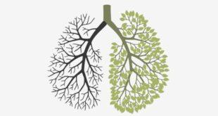 Suppléments por fumeurs