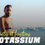 Potassium Minéral