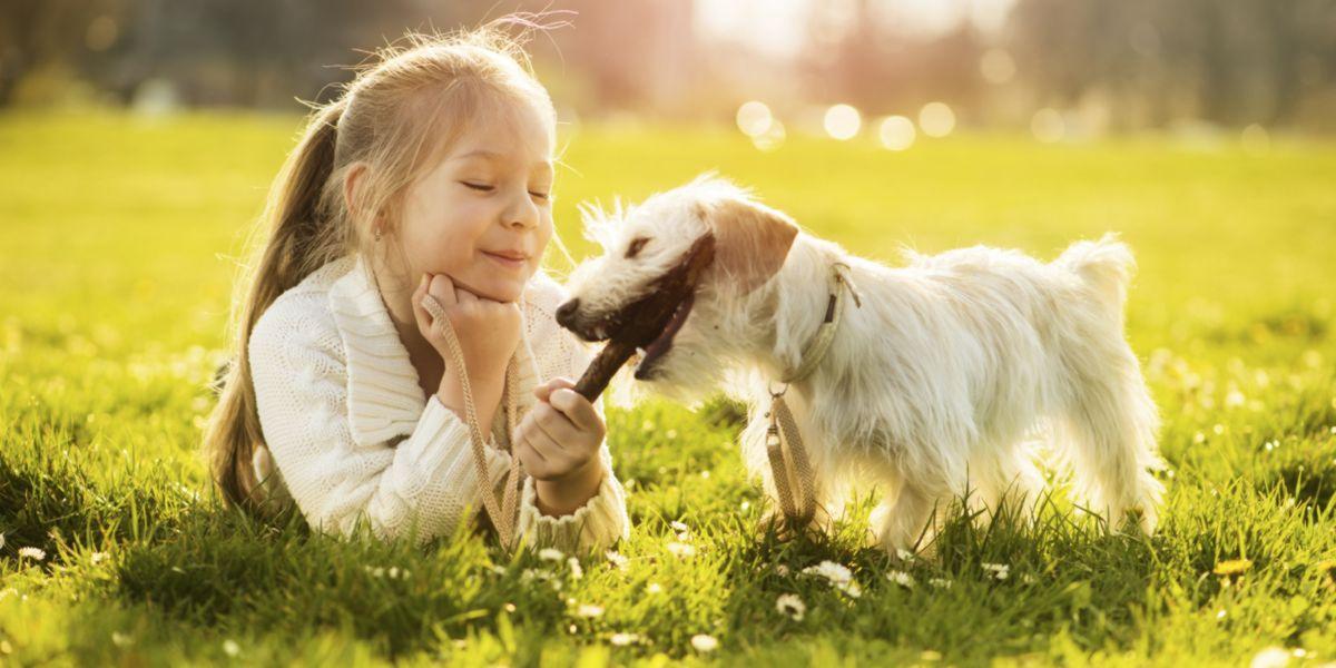Animal de compagnie pour enfants