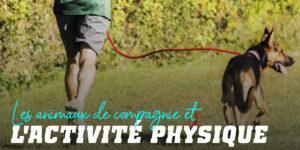 Animaux et Activité Physique