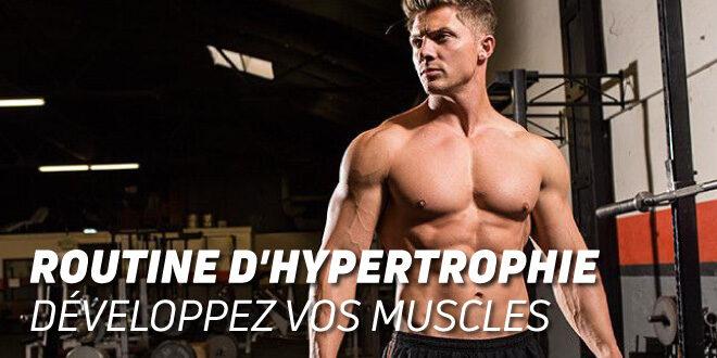 Routine d'Hypertrophie : Développez vos Muscles