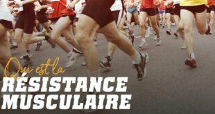 Tout ce que vous devez savoir sur l'Endurance Musculaire