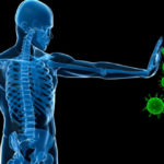 Glutathione and the Immune System