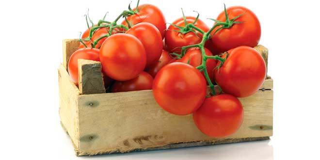 Box of tomatoes