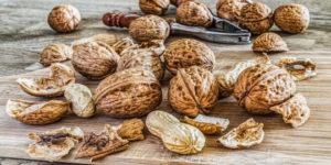 Walnuts are rich in Q10