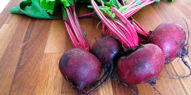 Beet root nitric oxide content