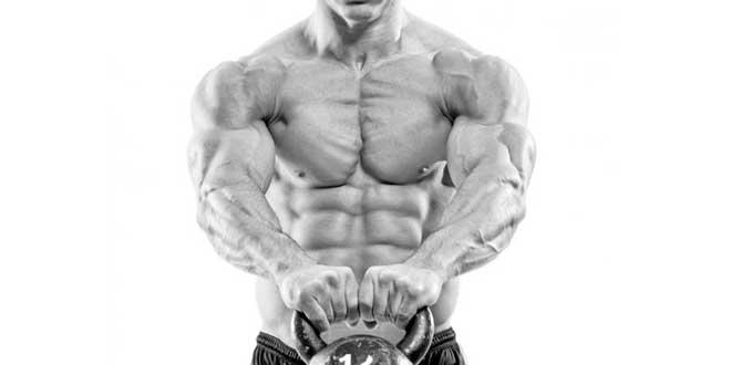 Muscle mass increase