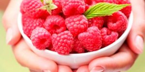 Properties and Benefits of Raspberry Ketones