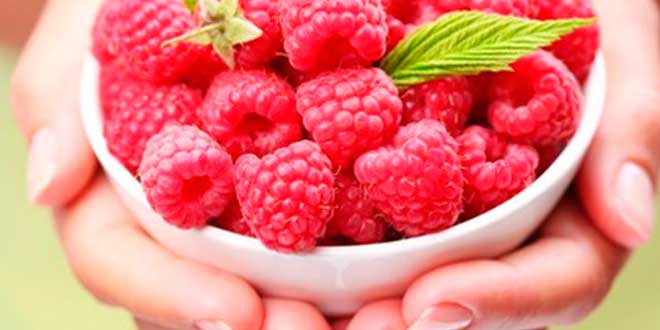 Raspberry Ketones – Stimulating the basal metabolism to lose weight