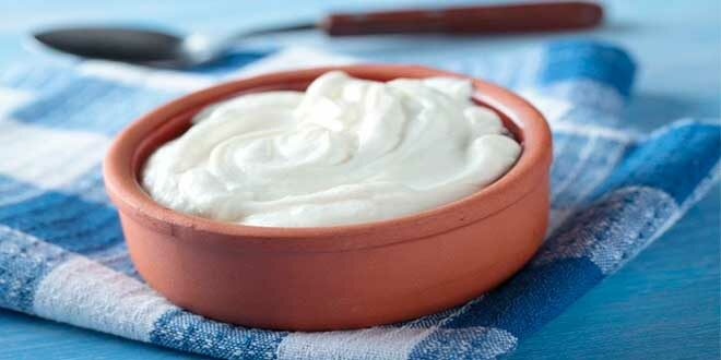 Yogurt: a great Support for your Immune System