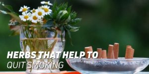 Herbs that help to quit smoking
