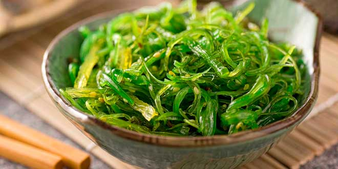 Kelp: a supplement for the metabolism