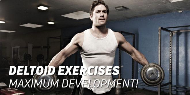Deltoid Exercises: Achieve the Maximum Development!