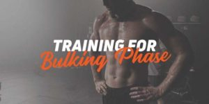 training-for-bulking-phase