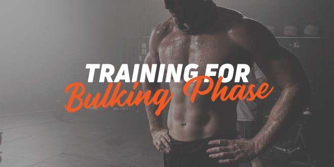 Effective bulking phase training: guidelines (I)