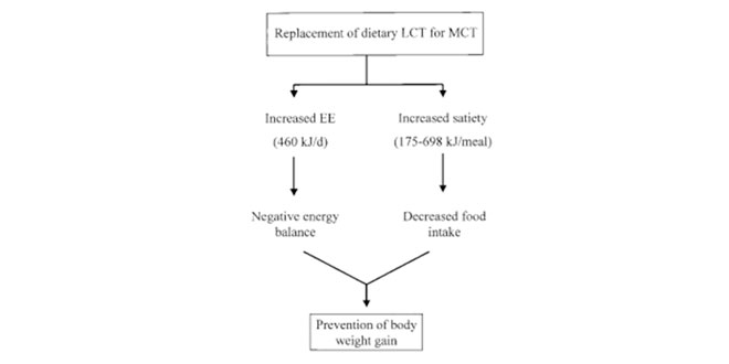 Replacing LCT for MCT