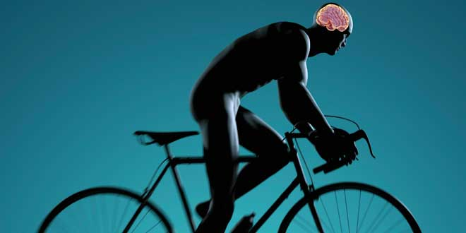 Man cycling and cognition