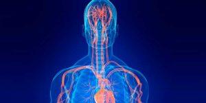 Benefits of Arginine