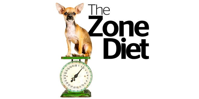 The Zone Diet, is it really balanced?