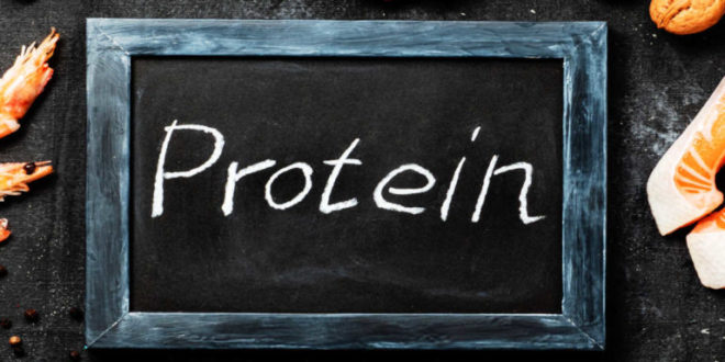 Types of protein and their functions