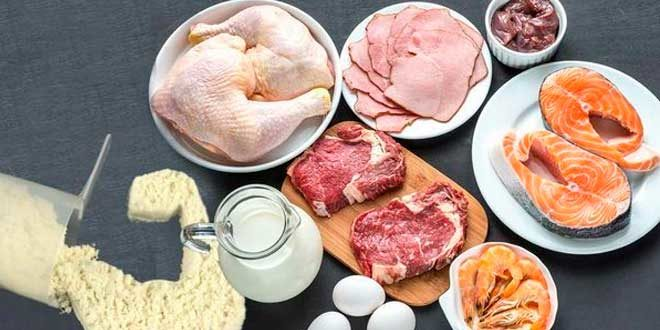 High-Protein Diet, do you know all its benefits?