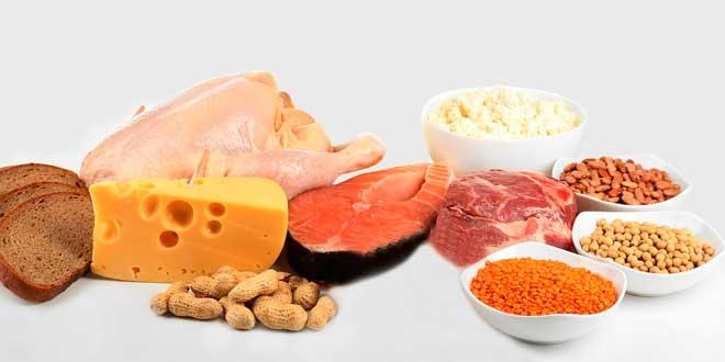 Foods leucine