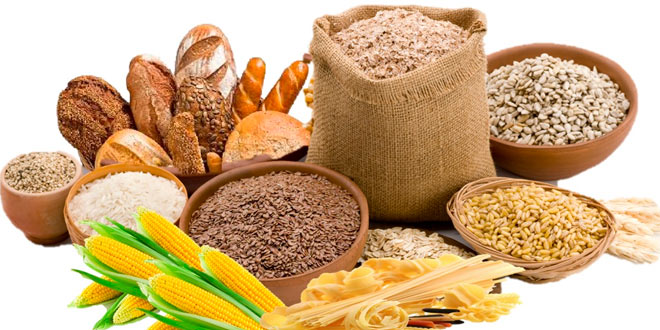 Foods that are rich in carbohydrates