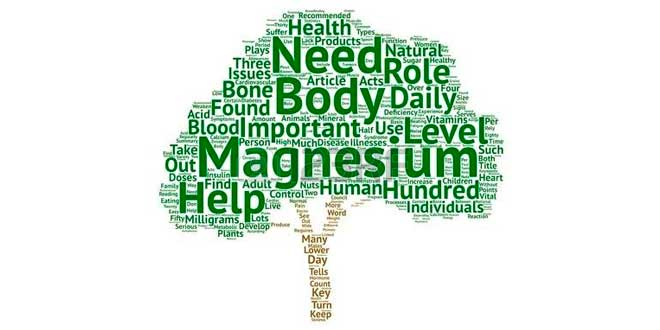 The importance of magnesium for the body