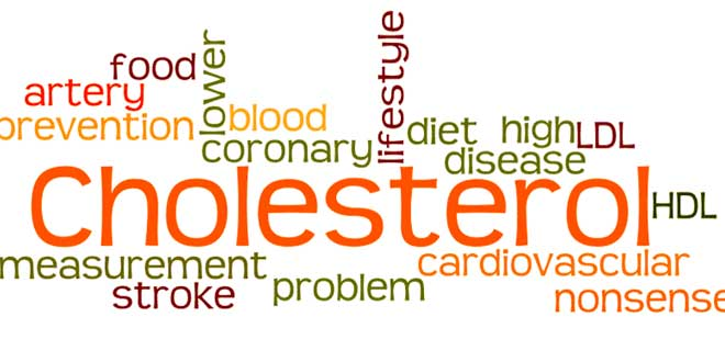 Cholesterol brainstorm