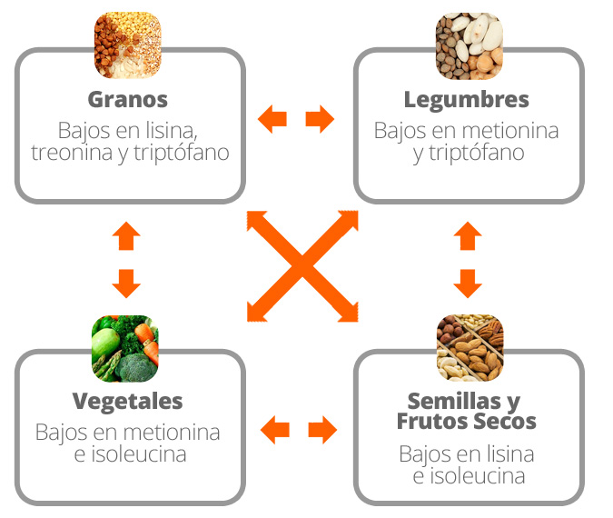 Combining different sources of vegetable protein
