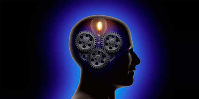 Nootropic effect on the brain